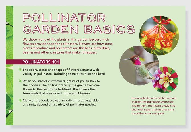 Pollinator Garden Exhibit Lerin Mizar Design